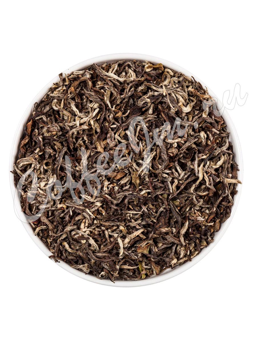 пурпурный чай заказать